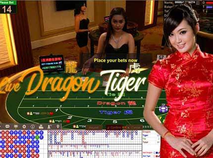 Dragon Tiger Casino Online